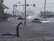 Nessie appears to be on holiday in Portland