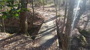 Mary Ann Brown Preserve Small Bridge