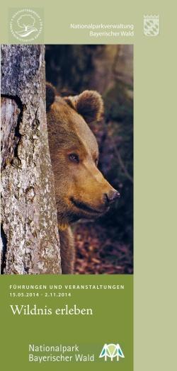 Volles Programm: Ab sofort gibt es das neue Sommerprogrammheft kostenlos in allen Nationalpark-Besucherzentren, in den Touristinfos der Nationalparkgemeinden und im Internet zum Download. (Foto: NPV Bayerischer Wald)