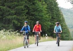 Mit dem Rad auf Tour durch den Woid – der Nationalpark bietet in den kommenden Wochen attraktive geführte Touren. (Foto: NPV Bayerischer Wald)