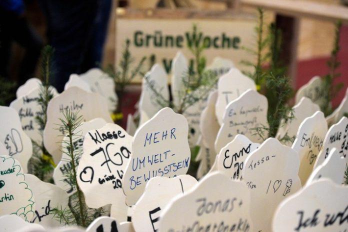 Wirtschaft, Rohstoff, Multitalent Holz, Bild, Agrar, Messen, Berlin