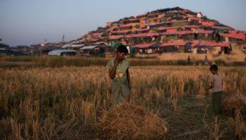 Papst Franziskus,News,Rohingya-Krise,Myanmar,Bangladesch,Flüchtlinge