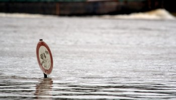 Rhein ,Köln,Hochwasser,News,