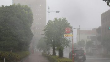 in Japan, Japan,Taifun,Jebi, Nachrichten, Ausland,Wetter