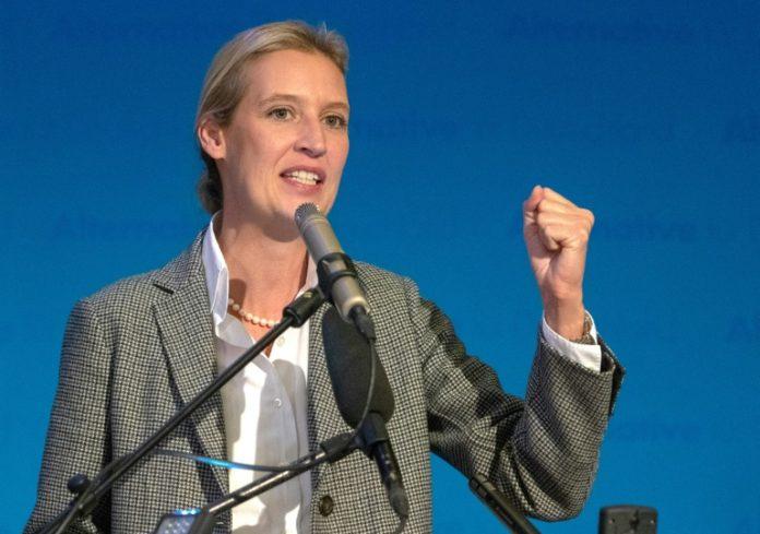 AfD,Bodensee ,Konstanz,Schweiz,Alice Weidel,Politik,Nachrichten,Presse,Aktuelles