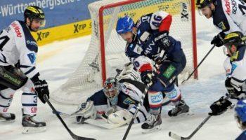 Adler Mannheim,Sport,Eishockey