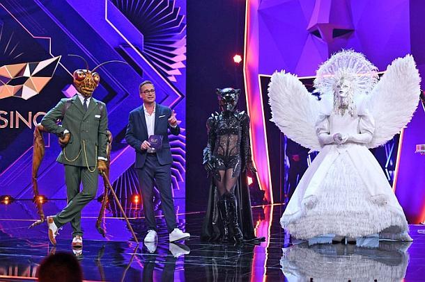The Masked Singer,Medien,Tv- Ausblick,Presse,News