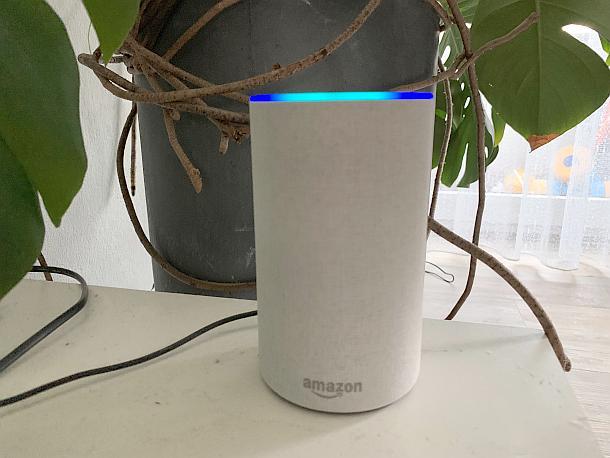Amazon,Alexa,Netzwelt,News,Presse,Aktuelle,Nachrichten,