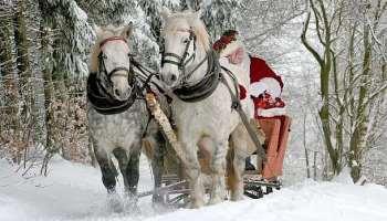 Weihnachten,Weihnachtsgeschenke,Presse,News,Medien,Aktuelle,Online