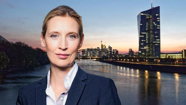 Alice Weidel,AfD,Berlin,Politik,Presse,News,Medien