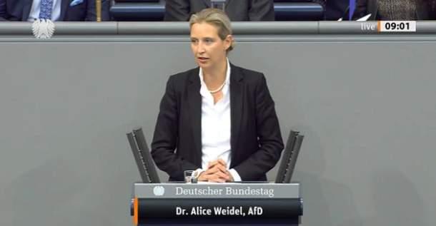 Alice Weidel,AfD,Berlin,Presse,Politik,Partei,News