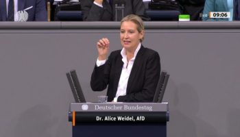 Alice Weidel ,Politik,Berlin,AfD,Presse,News,Medien