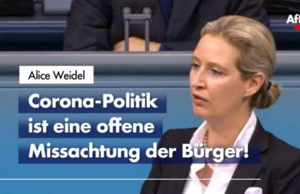 Alice Weidel,Politik,Presse,News,Medien