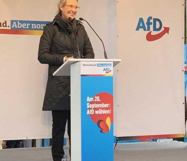 Alice Weidel, AfD,Politik,Presse,News,Medien