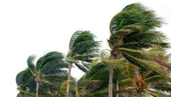 Tropensturm,Texas,News,Medien,Nicholas,