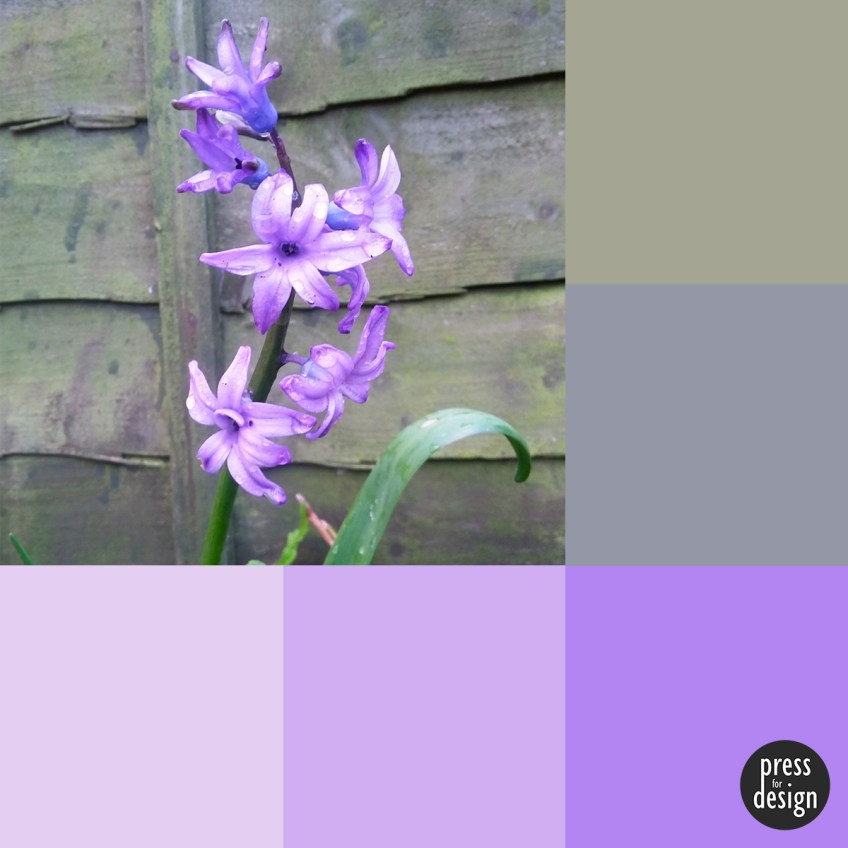 Tuesday Colour Inspiration: Bluebells
