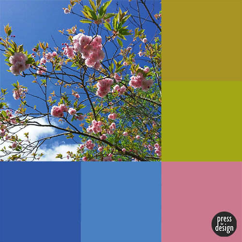 Tuesday Colour Inspiration – Cherry Blossom