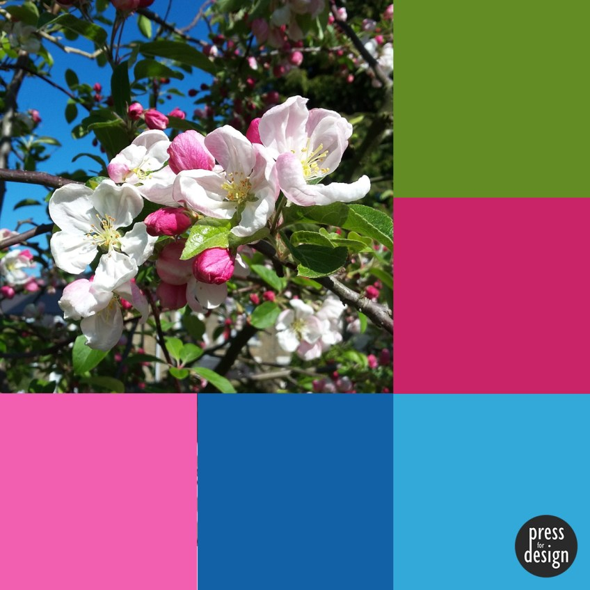 Tuesday Colour Inspiration: Crab Apple Blossom