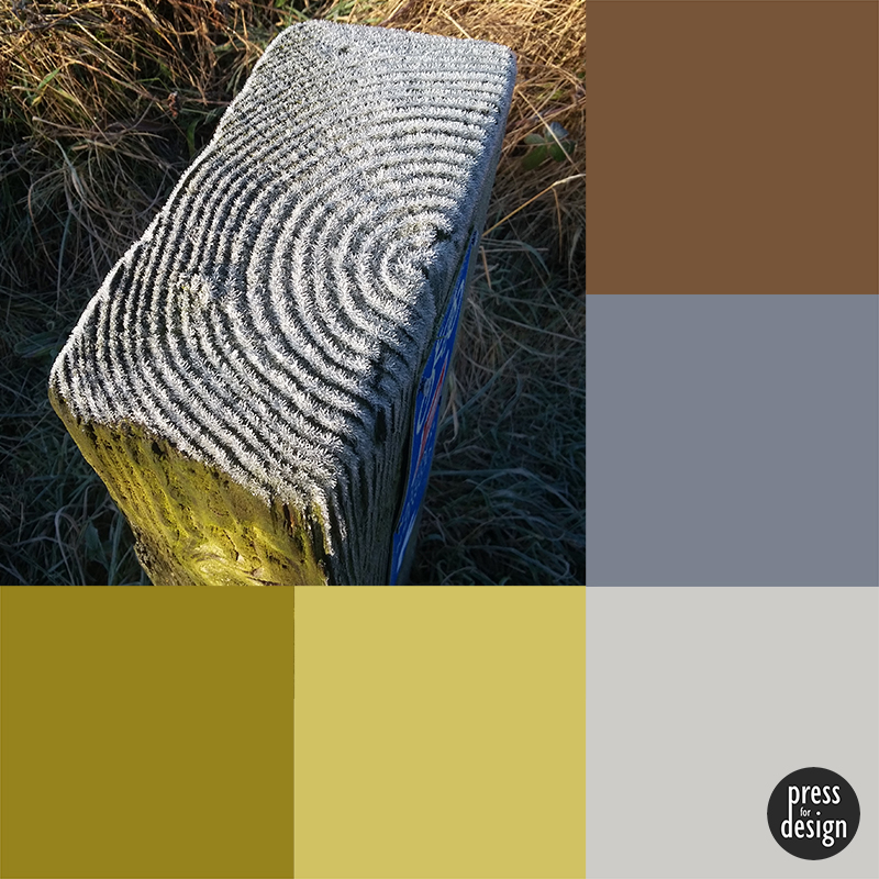 Tuesday Colour Inspiration: Frosted Wood