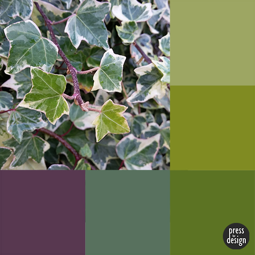 Tuesday Colour Inspiration: Ivy