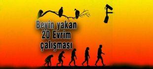 Beyin yakan 20 Evrim çalışması