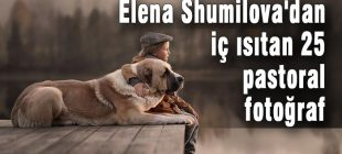 Elena Shumilova'dan iç ısıtan 25 pastoral fotoğraf