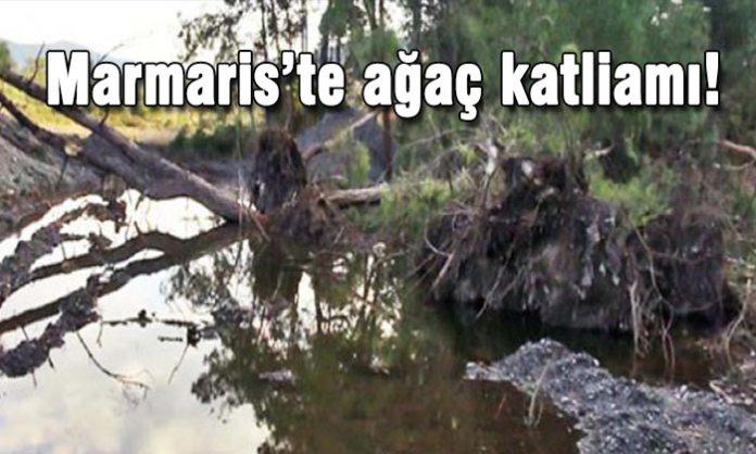 Marmaris, Çamlı Mahallesi'ndeki Gelibolu Azmağı'nın temizleme çalışmaları sırasında ağaçların kesilmesi tepkilere neden oldu.