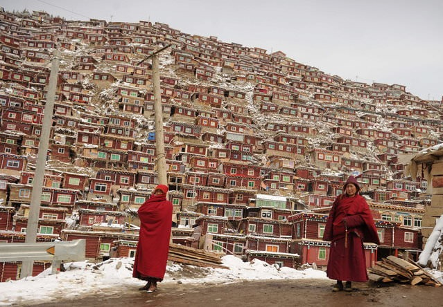 Larung Vadisi - Tibet (8)