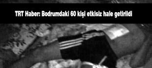 TRT Haber: Cizre'de bodrum katında kalanlar etkisiz hale getirildi