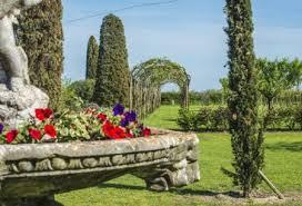 Tra archeologia e vino…le antiche viti della Serenissima, rivivono nel Brolo di Cannareggio