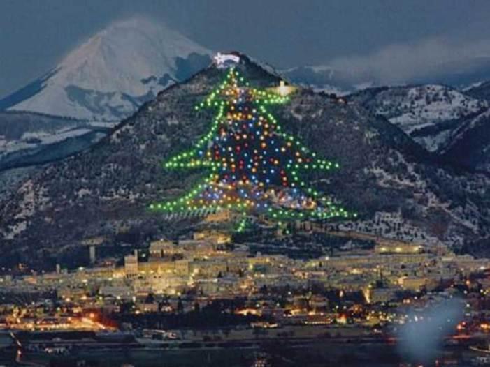 Accensione dell'Albero di Natale più grande del mondo