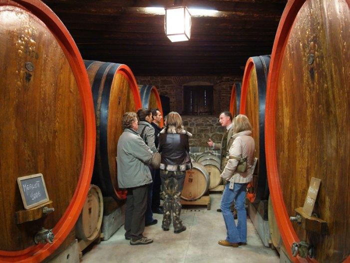 Movimento Turismo del Vino: cantine aperte a San Martino
