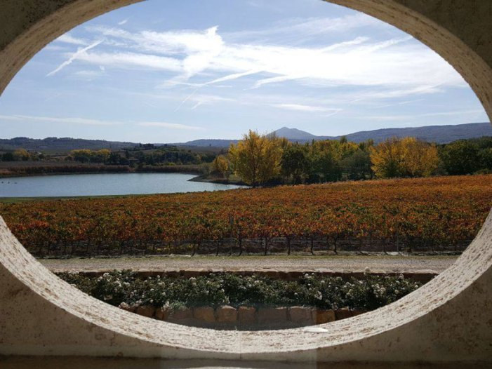 CARPINETO Grandi Vini di Toscana è anche quest'anno tra i 107 migliori produttori italiani