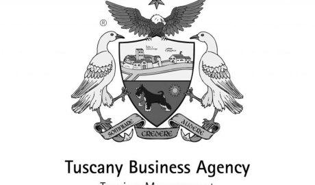 Logo-scala-di-grigio-Tuscany-Business-Agency-copertina