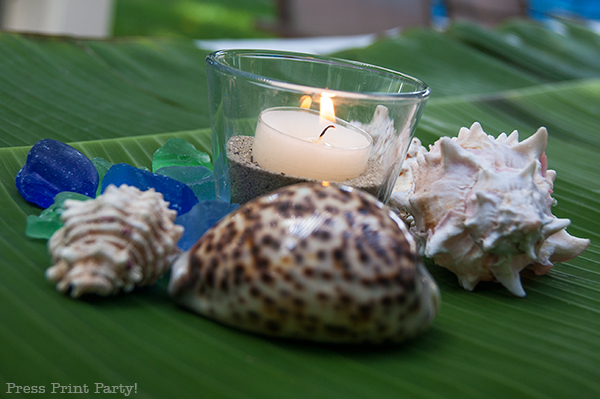 Votive-candle-and-shells
