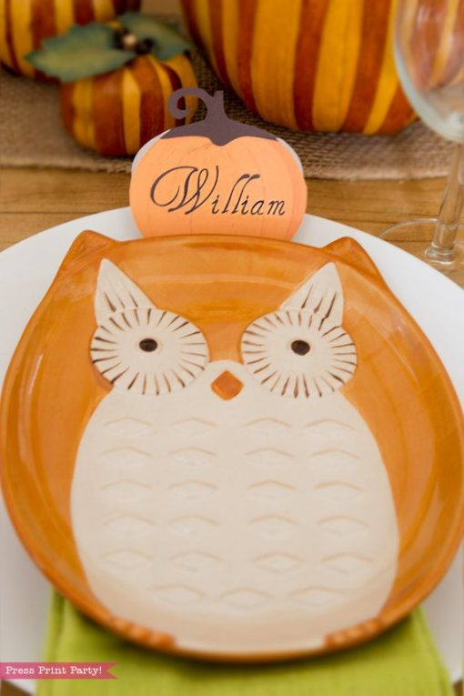 Rustic Thanksgiving place cards with owl plate - Press Print Party!