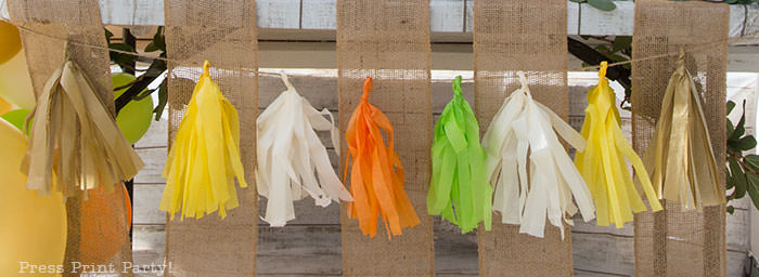 tissue paper tassels for woodland baby shower party ideas. Woodland animals Baby Shower Theme with woodland creatures and forest animals party supplies. Woodland decoration girl baby shower ideas. Can be used for woodland birthday party. Rustic forest animals with flowers and antlers. Fox baby shower, Deer baby shower.