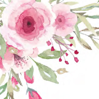Pink Flowers Theme