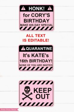 pink Quarantine Birthday Photo Booth Props and Signs, Editable Birthday Yard Sign, Drive-by birthday, For Car or Photos, Party Decor, INSTANT DOWNLOAD