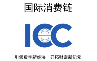 Small coins to move the world – A new generation of International Convergence Consumption (ICC) for VEN and WICC 2