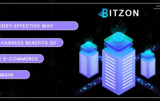 Bitzon – A Cost-Effective Way to Harness Benefits of the E-commerce Domain 13