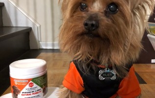 Ruff Hero Disrupts The Dog Care Industry With Their Safe, Natural and Yummy Chews That Protect Joints and Offer Pain Relief 3
