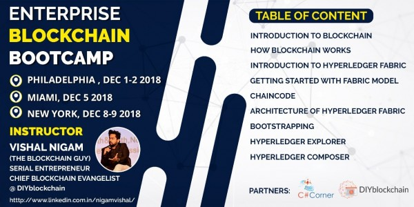 DIYblockchain – Biggest Blockchain Academy, Consulting and Research Centre Platform Launched in New Delhi and New York 1