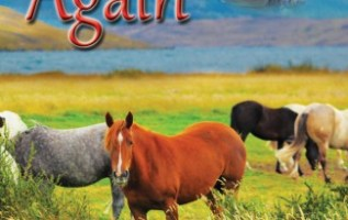 """USA Today Best-Selling Author K'Anne Meinel Launches Her New Book """"Vetted Again"""" 4"""