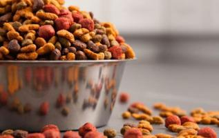 GCC Dog Food Market 2018: Industry Trends, Growth, Share, Demand, Opportunities and Forecast till 2023 – IMARC Group 3