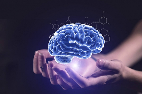 2019 Technological Advancement in Brain Implants Market leads to Strong Business Valuation of USD 8.29 Bn to 2023, at a CAGR of 11.10% 6