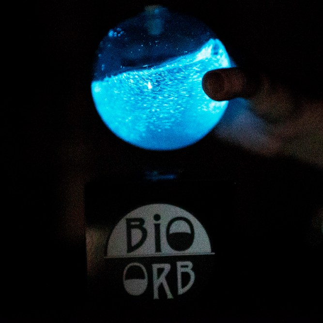 PyroFarms Launches New Bioluminescent Ball – The Bio-Orb 2