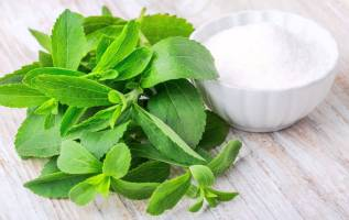 Global Stevia Market to Reach US$ 818 Mn by 2024 – IMARC Group 3