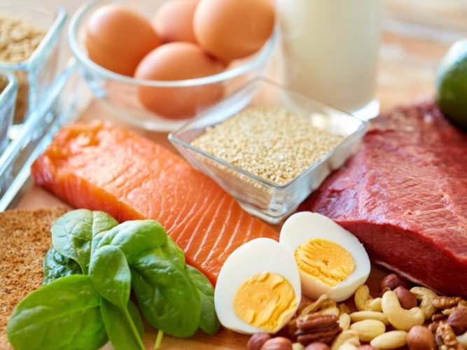 Protein Ingredients Industry Report Analysis By GELITA, AMCO Proteins, KEWPIE Corporation, Arla Foods, Fonterra, Omega Protein, Kerry Group, DuPont, Archer Daniels Midland Company, Cargill, Bunge 3