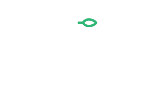 Cannabiz Offers Experts Hemp and Cannabis Company Collection Services 3